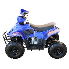 Квадроцикл бензиновый 110 CC Пламя Синий