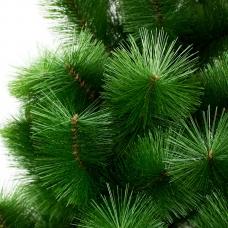 IT100 Сосна зелёная 1м
